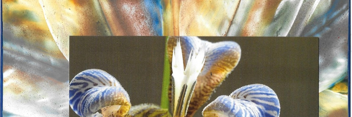 Picture framing met encaustic art: werkjes van de dag, 12-10-2019 | encaustic art | cursus encaustic art | online cursus encaustic | picture framing encaustic | encaustic art achtergrond