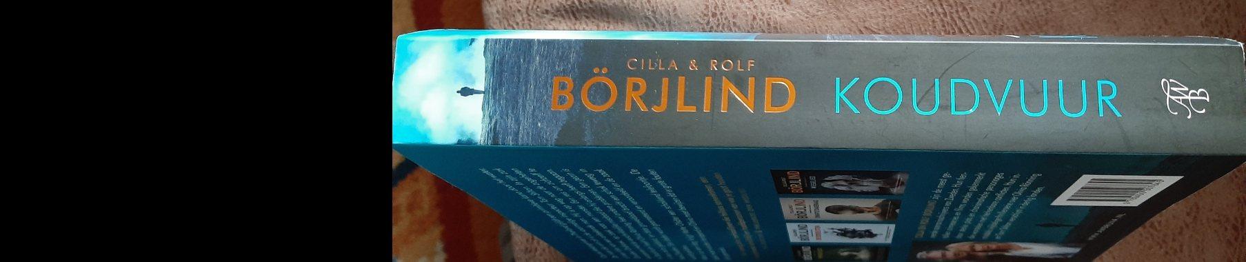 Boekrecensie: Koudvuur, Cilla en Rolf Börjlind. | cillaenrolfborjlind | koudvuur | ronningenstiltonthriller | awbruna | uitgeverijawbruna | borjlind | scandinavischethriller