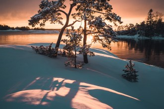 Mikko Lagerstedt – From Finland with Love - Thalmaray.co