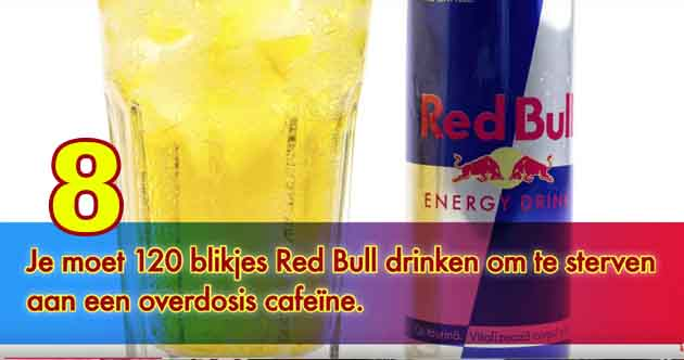 10 dingen die je nog niet wist over Red Bull. - MNLX