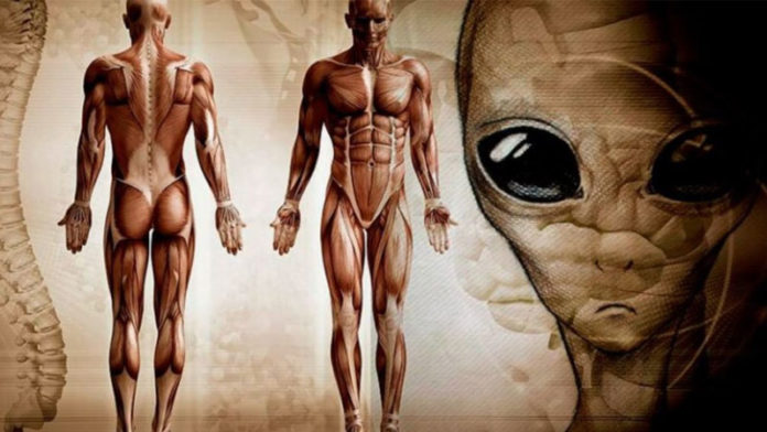 Apollo Astronaut Claims Aliens Created The Human Race - Mysterious Signal