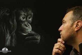 Richard Symonds tekent wilde dieren - Thalmaray.co