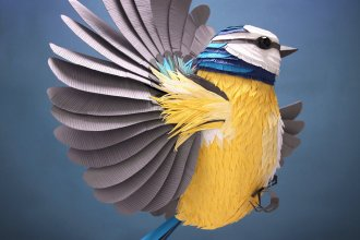 Lisa Lloyd – driedimensionale papieren vogels en andere dieren - Thalmaray.co