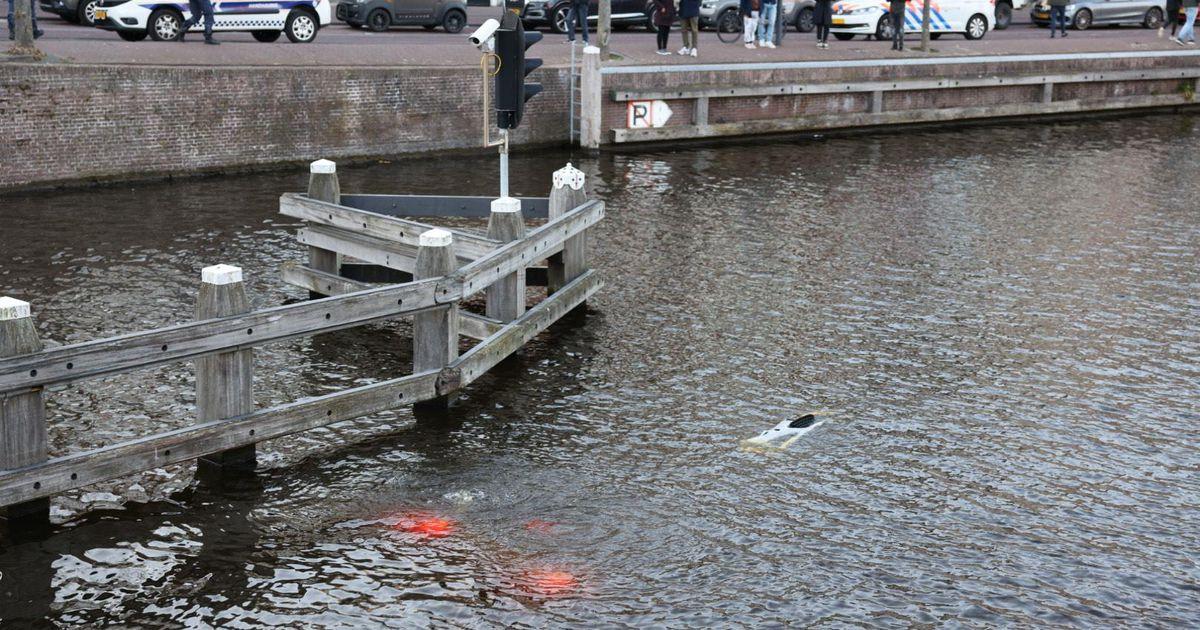Foutje: auto rolt gracht in terwijl bestuurder pizza's afhaalt in Haarlem   Binnenland   Telegraaf.nl