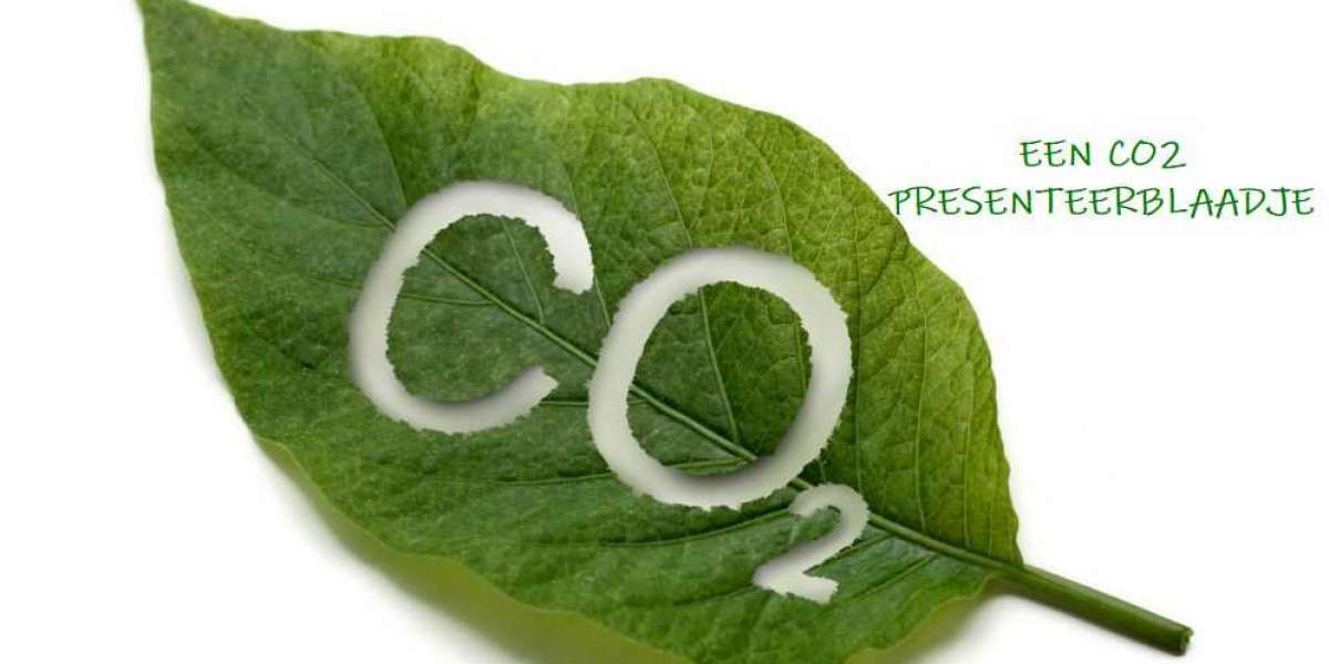 Een CO2 Presenteerblaadje
