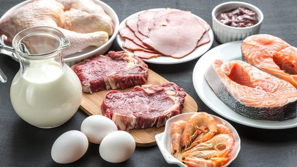 Eiwitrijke voeding belangrijker voor je gezondheid dan je denkt + Recepten - Artikel.nl