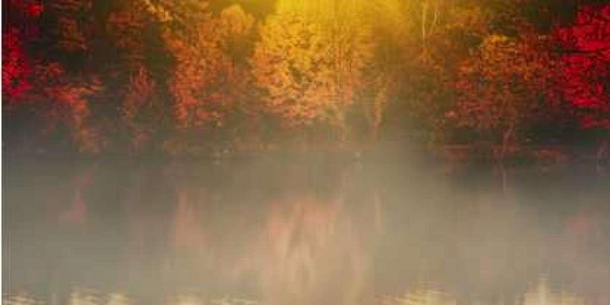 Wat te doen tegen herfst (najaar) vermoeidheid?